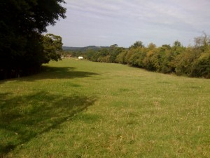Haytor-Hill02.jpg