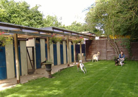 Dog Boarding Kennels Dublin